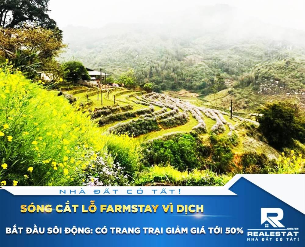 Sóng cắt lỗ farmstay vì dịch bắt đầu sôi động: Có trang trại giảm giá tới 50%