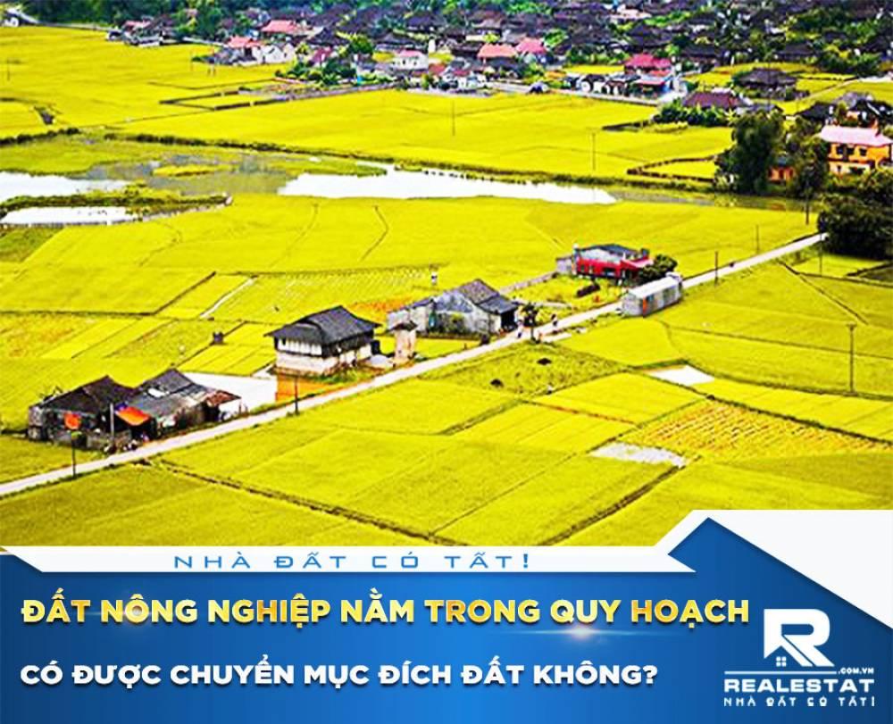 Đất nông nghiệp nằm trong quy hoạch có được chuyển mục đích đất không?